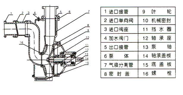 ZWPB型不锈钢防爆自吸式无堵塞排污泵(结构图)
